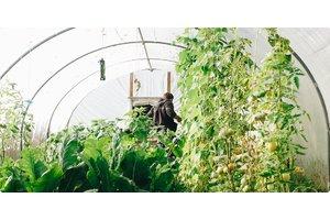 果蔬基地解决方案